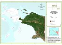 Peta Sebaran Konsesi Perkebunan 2010 Propinsi Papua