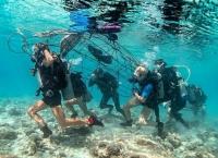 Biorock Menarik Wisatawan