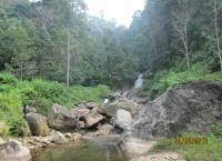 Pengelolaan Potensi Ekowisata Air Terjun Telago Jando, Areal Kerja Hutan Desa Sangi Letung, Bungo