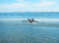 Torang Anak Pulau