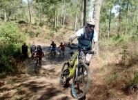 Tracking sepeda di kawasan Hutan Bali Timur