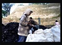 Wajah Batubara dan Perusakan Lingkungan