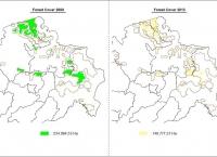 Perubahan Tutupan Hutan Lahan Gambut Provinsi Sumatera Selatan