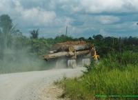 PT Kodeko dan PT Meratus di Kalimantan Selatan - 2003