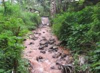 ini-salah-satu-potret-akibat-hutan-yang-tergerus-kalau-sudah-berwarna-tanah-gini-airnya-masih-bisa-dijadikan-sumber-air-minum-bagi-masyarakat-kah