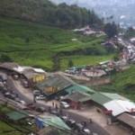Kawasan Lindung Puncak Hancur, Pemerintah diminta Bertanggung Jawab