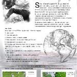 Deteksi Illegal Logging menggunakan Sistem Informasi Geografis