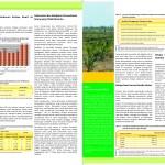 Ancaman Deforestasi dan Kerusakan Lahan Gambut di Tengah Pembangunan Perkebunan Kelapa Sawit Kalimantan Tengah