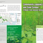 Community Logging to Store and Sink Carbon – A Model from Konawe Selatan