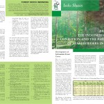 the Indonesian Forests Condition and the Performance of Stakeholders in Forestry