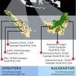 Hutan Kalimantan dan Sumatera Hilang 110 x Lap Sepakbola Setiap Jam