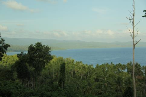 Gambar 2. Suasana hutan, kebun, dan laut yang menjadi sumber kehidupan masyarakat di Patani