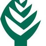 Peran Perbankan Terhadap Ekspansi Industri dan Hutan Tanaman Industri PT Toba Pulp Lestari