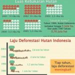 5 Fakta Penyelenggaraan Kehutanan Indonesia