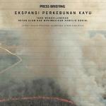 Ekspansi Perkebunan Kayu – Menghilangkan Hutan Alam dan Menimbulkan Konflik Sosial