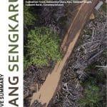 Silang Sengkarut Pengelolaan Hutan Indonesia