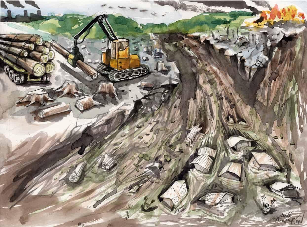 """Deforestasi di Indonesia: """"Alarm"""" Pengelolaan Hutan Yang tidak Lagi Terdengar"""