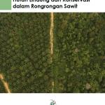 Hutan Lindung dan Konservasi dalam Rongrongan Sawit
