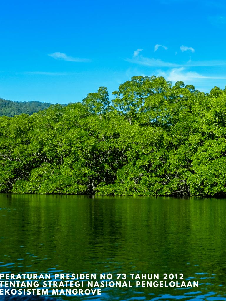 Perpres No 73 tahun 2012 tentang Strategi Nasional Pengelolaan Ekosistem Mangrove