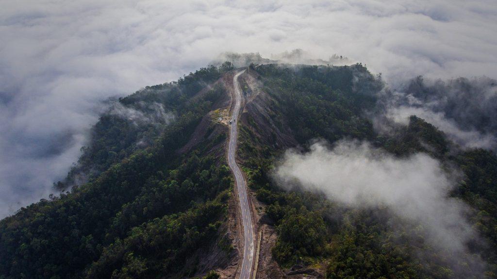 Deforestasi deforestation